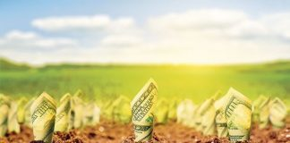Fermierii vor primi de la Guvern banii în avans