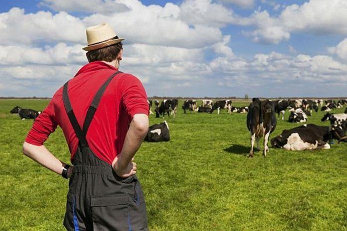 Fermierii vor primi aproape un miliard de euro