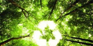 România, pe ultimele locuri în UE la reciclar