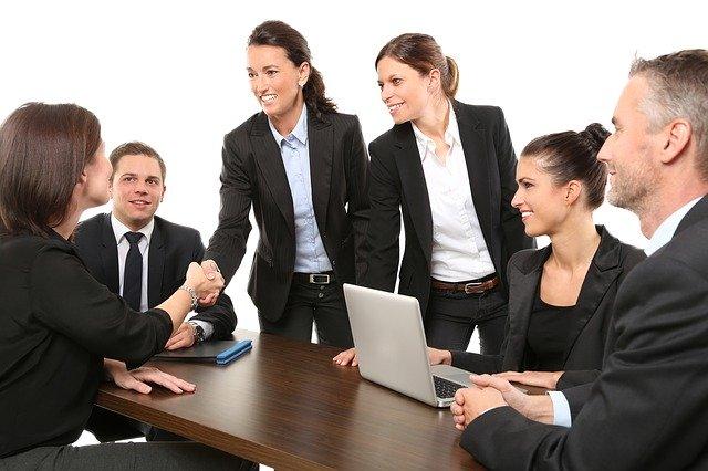 echipa de business