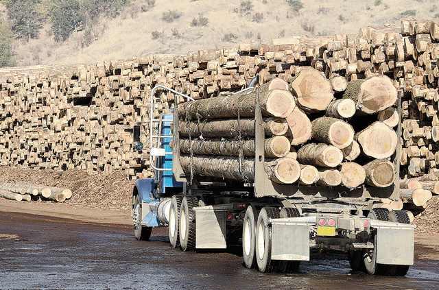 Inspecții la 3 firme de prelucrare a lemnului suspectate de practici anticoncurențiale.