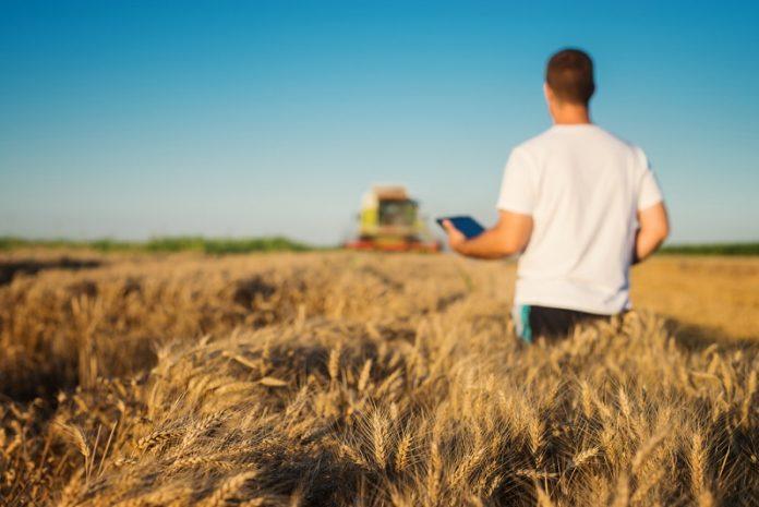 management si dezvoltare rurala